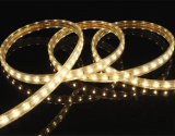 مجوهرات إستعراض [لد] ضوء خفيفة خطّيّ