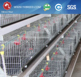 De Kooi van de Kip van het landbouwbedrijf met het Automatische Systeem van de Schraper van de Mest