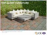 Rattan do PE & mobília do alumínio, sofá ao ar livre do jardim (TG-6005)