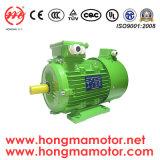 Hmvpの頻度インバーター速度制御、非同期誘導電動機Hmvp711-6p-0.18kw