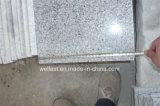 China G603 Grey Granito Azulejos para la venta
