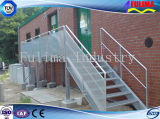 Nuova scala d'acciaio progettata e residenziale per il workshop/magazzino (SSW-S-001)