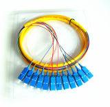 Sm SC/PC 12のコア光ファイバピグテール