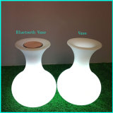 Modèle lumineux de vase à cube en Lighitng d'orateur avec le haut-parleur de Bluetooth avec la lampe