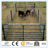 Rete fissa trattata termicamente di collegamento Chain della rete fissa dell'azienda agricola