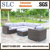 屋外の藤のソファーの組セット、半円の藤のソファーの組はセットした(SC-A7321)