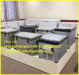 congelador solar do refrigerador solar da C.C. de 12V 24V para África