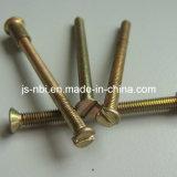 真鍮の高品質の小ネジ