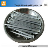 Factory Galvanized/Hot Dipped Galvanized Public garden Boat Nails