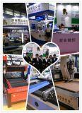 Ql-M25 China Fertigung hölzerner CNC-Fräser