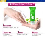 Soins de la peau Cream 50g/PCS Moisturizing Hand Cream Hand Care de Pilaten Herbacin Perfect Hand