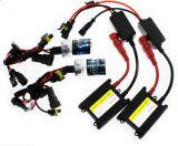 Kit 12V 35W di conversione del xeno NASCOSTO indicatore luminoso dell'automobile del LED