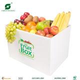 Caixa da caixa da embalagem da fruta para a venda por atacado em China