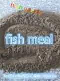 Zufuhr-additives Fischmehl mit Qualität