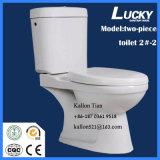 2#-2 het afzonderlijke/Tweedelige Washdown Ceramische Toilet van de Badkamers in Sanitaire Waren