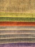 Chenille-Jacquardwebstuhl-Sofa-Gewebe gebildet von 100%Polyester (HD020)