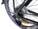 250W Brushless Motor 16 Inch Folding Lithium Electric Bike