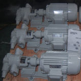식물성 기름 펌프, 중유 펌프, 회전하는 기어 펌프, 기어 기름 펌프