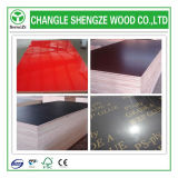 4*8FT Phenolic Two Times Hot Press Printed Logo Shuttering Plywood