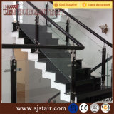 手すりのInox屋内木製の階段ガラス柵、ステンレス鋼ガラスクランプ階段柵の手すり(SJ-S087)