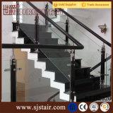 Pasamano de cristal de la barandilla de la escalera de madera de interior de Inox, barandilla de cristal del pasamano de la escalera de la abrazadera del acero inoxidable (SJ-S087)