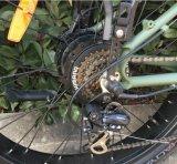 高い発電ブラシレスモーター脂肪質の縁の雪の電気バイクフレーム(OKM-1279)