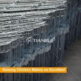 Конструкция Tianrui самая лучшая автоматическая тип 4 клетка батареи слоя ярусов