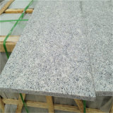 Shandong Grey Granite G341 Pavé