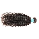 Encierro frontal del cordón rizado rizado con el pelo brasileño de la Virgen de los manojos con el pelo humano del encierro que teje 3bundles con el encierro del cordón