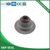 Gummidichtung Oilseal mechanische Dichtungs-Ventil Oilseal Bp-A025