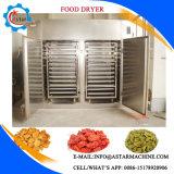 蒸気暖房が付いている野菜洗濯機そしてドライヤーを作る工場