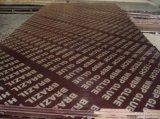 4X8'contruction imprägniern Furnierholz für Beton