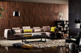 Sofà sezionale del nuovo di disegno 2016 fabbricato elegante moderno del salone (HC8131)