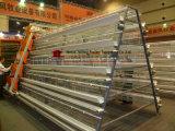 Landwirtschaftliche Maschine-Geflügel sperren für Huhn-Schicht Boriler Hünchen ein