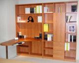 2015 Form-moderner Bücherschrank Bk-10
