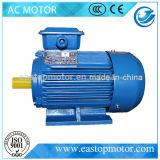 Motore a corrente alternata Elettrico approvato Y3 del Ce per le centrali elettriche con alloggiamento di alluminio
