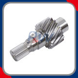 Asta cilindrica dell'ingranaggio di azionamento (applicata in unità di maneggio del materiale)