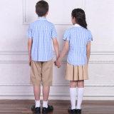 Uniforme scolastico primario su ordinazione di Deisgned con i pannelli esterni uniformi