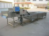 泡野菜洗濯機の中国の製造者の自動野菜洗濯機