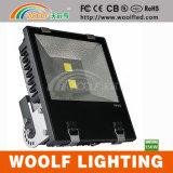 Proiettore esterno della mobilia LED di 300 eventi di disegni LED