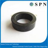 回転子のための亜鉄酸塩の磁石の放射状の磁化