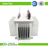 10kv 30kVA ~ 1600kVA Series Oil Immersed Power Distribution Transformer