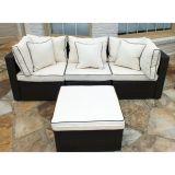 Vime bom de Furnir Wf-17040 sofá de 4 partes ajustado com coxim