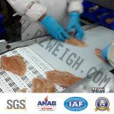 Máquina de classificação automática do SUS 316 da elevada precisão de Poutry dos peixes