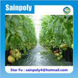 Estufas da Plástico-Película da alta qualidade para tomates agriculturais