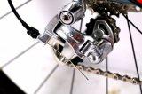 Vélo de course de mode simple vitesse de haute qualité