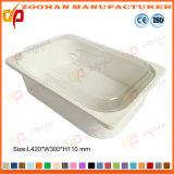 De draagbare Plastic Container van de Opslag van de Doos van de Vertoning van het Voedsel met Dekking (Zhtb18)