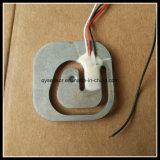 De Cellen van de Lading van de Schaal van het Lichaamsvet/de Digitale Cellen van de Lading van de Schaal van de Badkamers/de Digitale Cellen van de Lading van de Schaal van de Badkamers (qh-C5)