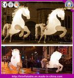 صنع وفقا لطلب الزّبون جديدة تصميم قابل للتجنيد مضحكة قابل للنفخ حصان حجر السّامة زي