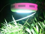 Luce della pianta del LED crescente (JUXN-02 90W)
